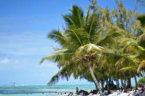 Catamaran Tour on East Island,Mauritius
